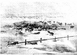Sketch by Henry Worrall of 1886 Blizzard in Harper's Weekly, 7 February 1886.