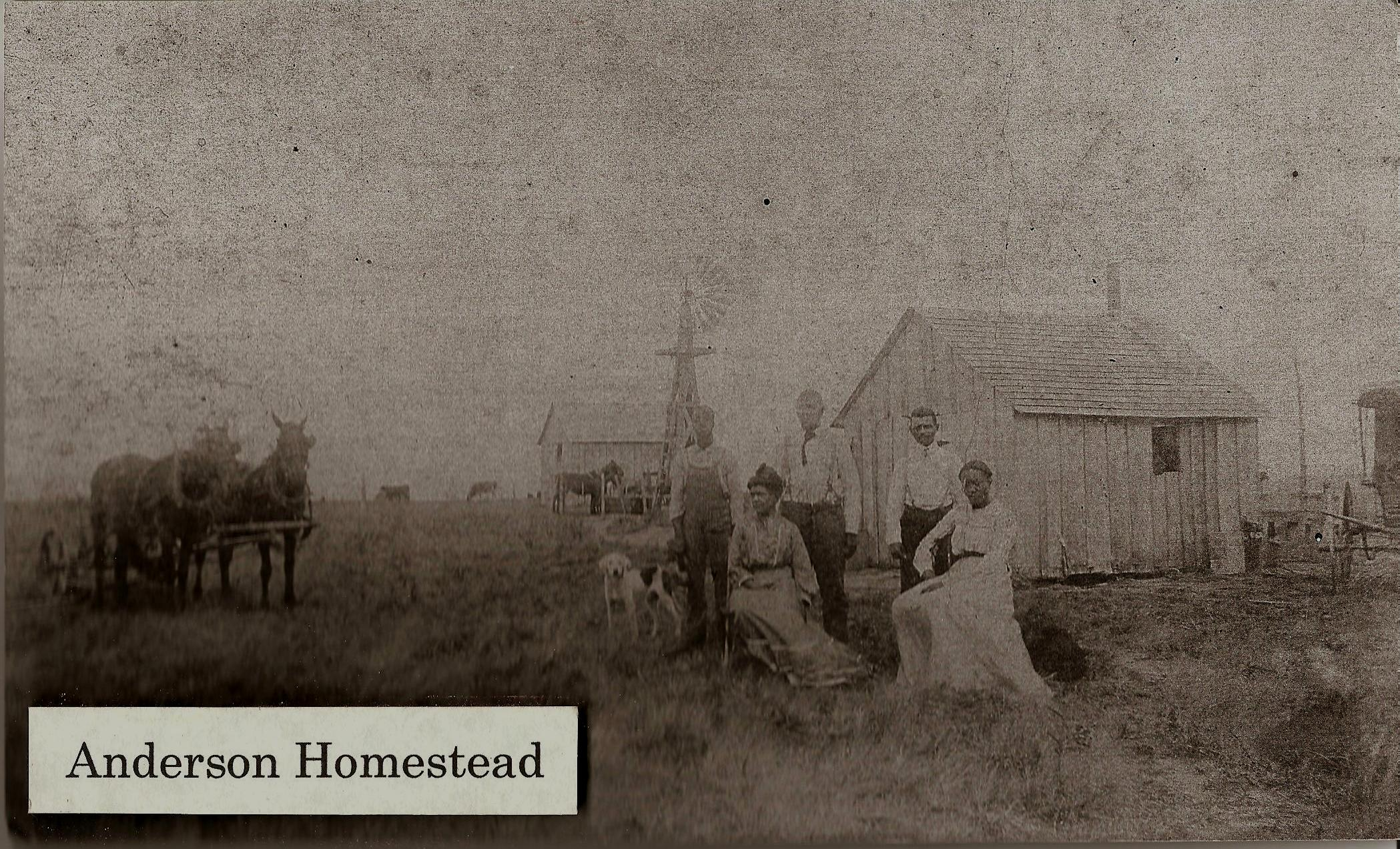 Short stories about harvey co ks and its cities for Kansas homestead act